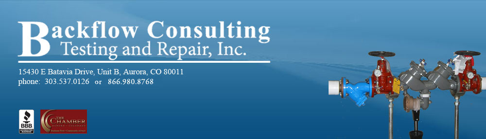 Backflow Consulting